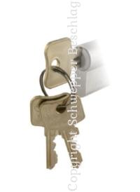 Schlüssel für Profil-Zylinder und Vorhangschlösser